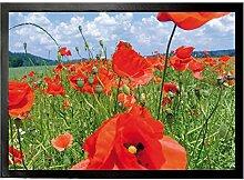 1art1 94662 Blumen - Mohnblumenfeld Fußmatte Türmatte 70 x 50 cm
