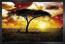 1art1 Afrika Poster und MDF-Rahmen -