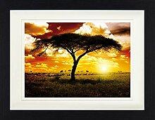 1art1 Afrika - Sonnenuntergang In Der Savanne,