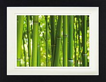1art1 Bambus - Bambuswald Gerahmtes Bild Mit Edlem