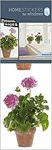 1art1 Blumen - Rosa Geranien Aufkleber