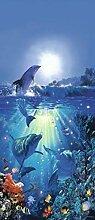 1art1 Delfine, Delfin An Der Sonne Fototapete