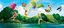 1art1 Disney Fairies - Tinkerbell, Klara, Vidia