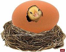 1art1 Hühner - Süßes Küken Im Ei Aufkleber