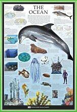 1art1 Schule Poster und Kunststoff-Rahmen - Der