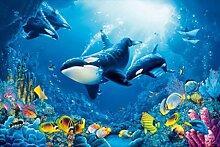 1art1 Set: Unterwasserwelt, Orkas, Lebensfreude