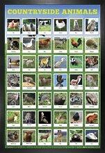 1art1 Tiere Poster und MDF-Rahmen - Auf Dem Land,