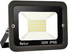 1er 30W LED Strahler Außen Superhell LED Fluter