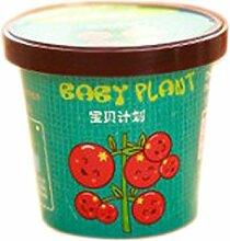 1pcs mini kreative Topfpflanzen Chili Sonnenblumen und Gemüsepflanzensamen Miniatur-Hausgarten Pflanze vergossen Baby-Geschenk Tomate Tomaten