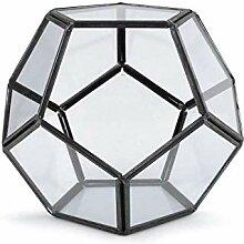 1stück Transparent Terrarium/Hängende Glasvase
