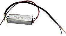 1W 300mA Konstantstromversorgung LED