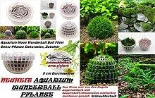 1x Aquarium Wunder Ball Moos Pflanze Neuheit Aquarium Deko Filter Pflanze Aquariumpflanzen R61