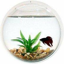 2.2 Liter Aquarium Wand Befestigung Fischtank Hängend + Pflanze & Steine