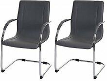 2 Besucherstühle grau Schwingstuhl Konferenzstuhl Schwinger Freischwinger