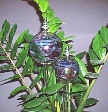 2 Durstkugeln im Set Bunt Bewässerungskugeln Durstkugel Pflanzensitter