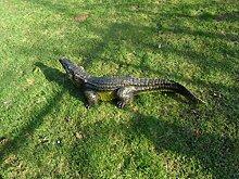 2 Krokodil Figuren in verschieden größen