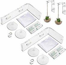 2 Pack Pflanzenaufhänger Saugnapf Fensterhalter