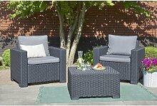 2-Sitzer Lounge-Set Janzen aus Rattan