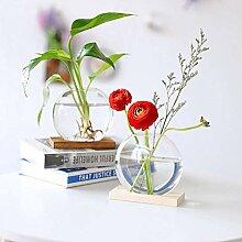 2 Stück Desktop Hydroponic Glas Pflanzer Zwiebel