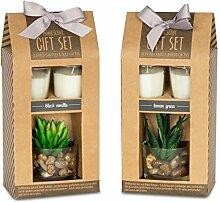 2 Stück Geschenkbox Duftkerze Vanille Lemongras Düfte Kerzen Sukkulente Dekoration Geschenkse