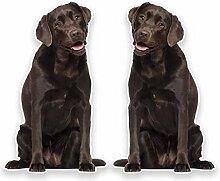 2 x 25cm/250mm Chocolate Labrador Fenster kleben