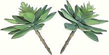 2x Echeverias (13cm)–Pflanzen künstliche Sukkulenten