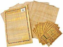 20 Blank ägyptischen Papyrus-Blätter für Kunstprojekte und Schulen 8x12in 20x30cm