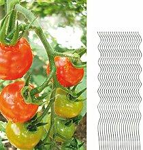 20 Tomatenspiralstäbe 150cm voll verzinkt Tomatenstab Tomaten Ranke Pflanzstab Stahl Profi Qualität Tomatenspiralstab