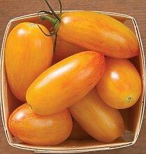 200 Gemüse Tomaten Samen Erbstück süß Gartenpflanzen Samen für Hausgarten 13 Bepflanzung