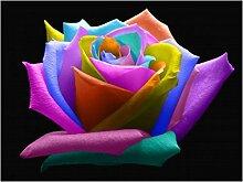 200 PCS Busch Regenbogen Rose Samen, Bonsai Blumen