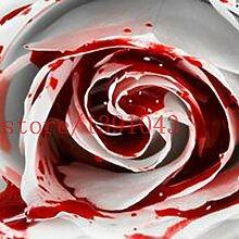 200 PCS Rose sät Rarest Weiß Blut-Rosen-Pflanze Blumensamen Blumengarten Asaka Seltene wahre Blume für Hausgarten
