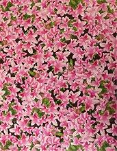 20pcs / bag Japanische Azalee Samen, Rhododendron Azalee, Blumensamen Baumsamen decken Blume 15 Farben 11 DIY Pflanze Hausgarten Bonsai