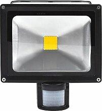 20W LED Strahler Bewegungsmelder Außen Fluter LED