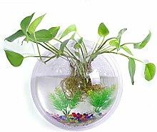 23cm Durchmesser Clear Acryl Runde Wall Mount hängenden Fish Bowl Tank Blume Pflanze Vase Home Dekoration