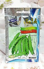 25 Samen 5 g, 1 Beutel Chia Tai Winged Bohne Samen