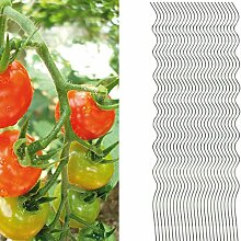25 Tomatenspiralstäbe 180cm voll verzinkt Tomatenstab Tomaten Ranke Pflanzstab Stahl Profi Qualität Tomatenspiralstab
