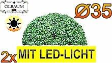 2X Buchsbaum mit LED-Lichtband große