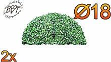 2x PREMIUM Buchsbaum, kleine Buchsbaum-Halbkugel