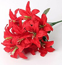 3 Lilium asiatic - Schwarze Asiatische Lilie