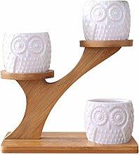3PCS Weiß Keramik Blumentopf & Bambus Regal