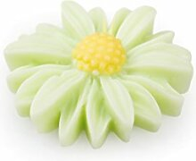 30 Daisy Miniblütchen, Polyresin , grün ca. D:2,7cm