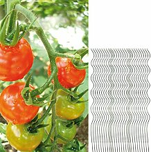 30 Tomatenspiralstäbe 110cm voll verzinkt Tomatenstab Tomaten Ranke Pflanzstab Stahl Profi Qualität Tomatenspiralstab