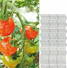 30 Tomatenspiralstäbe 150cm voll verzinkt Tomatenstab Tomaten Ranke Pflanzstab Stahl Profi Qualität Tomatenspiralstab