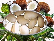 300g Mandeln Kokos Gastgeschenke Hochzeit Candy Bar Zuckermandeln
