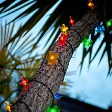 30er LED Solar Lichterkette Blumen bunt Lights4fun