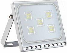 30W Kaltweiß LED Fluter Außen, 3000LM Superhell