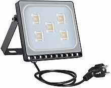 30W LED Flutlicht Flutlichtstrahler Strahler
