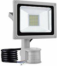 30W LED Flutlicht SMD Außenleuchte Kaltweiß