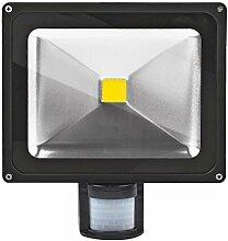 30W LED Strahler Bewegungsmelder Außen Fluter LED