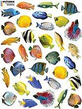 33 x Vinyl Aufkleber Fische - Ohne weiße Ränder